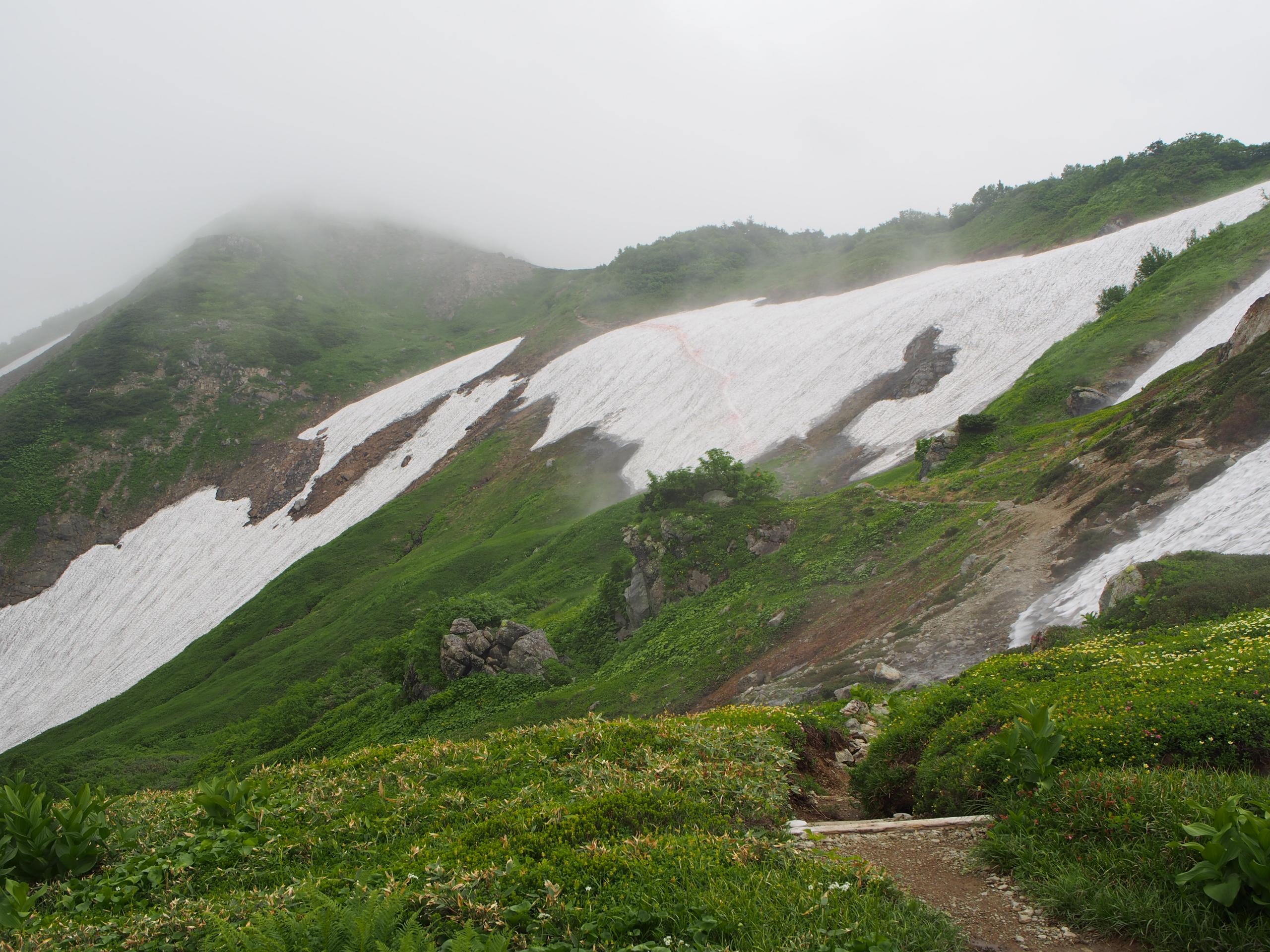 朝日岳雪渓