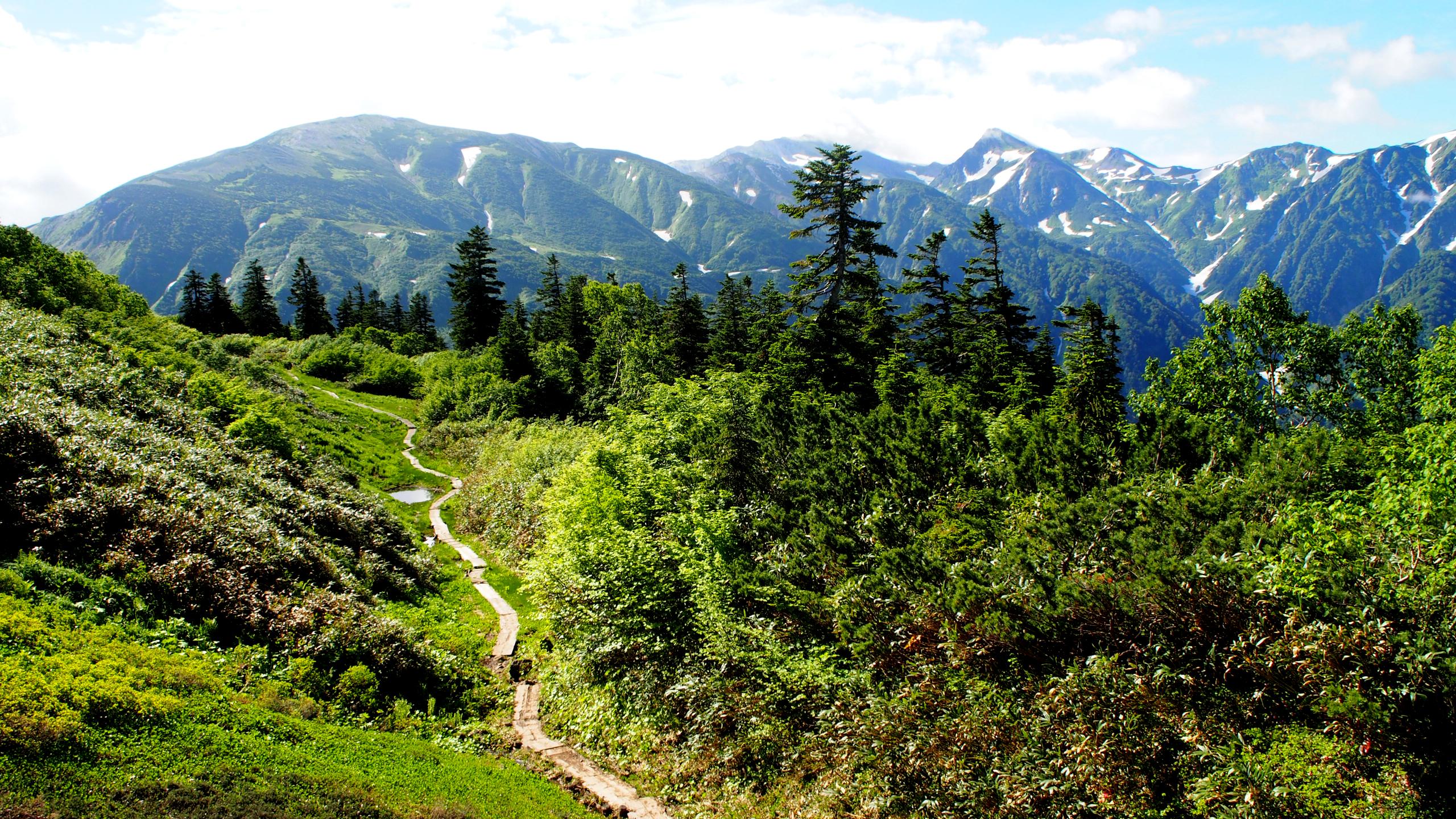 水平道から白馬岳