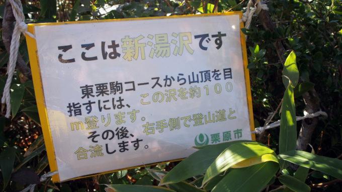 栗駒山の紅葉5