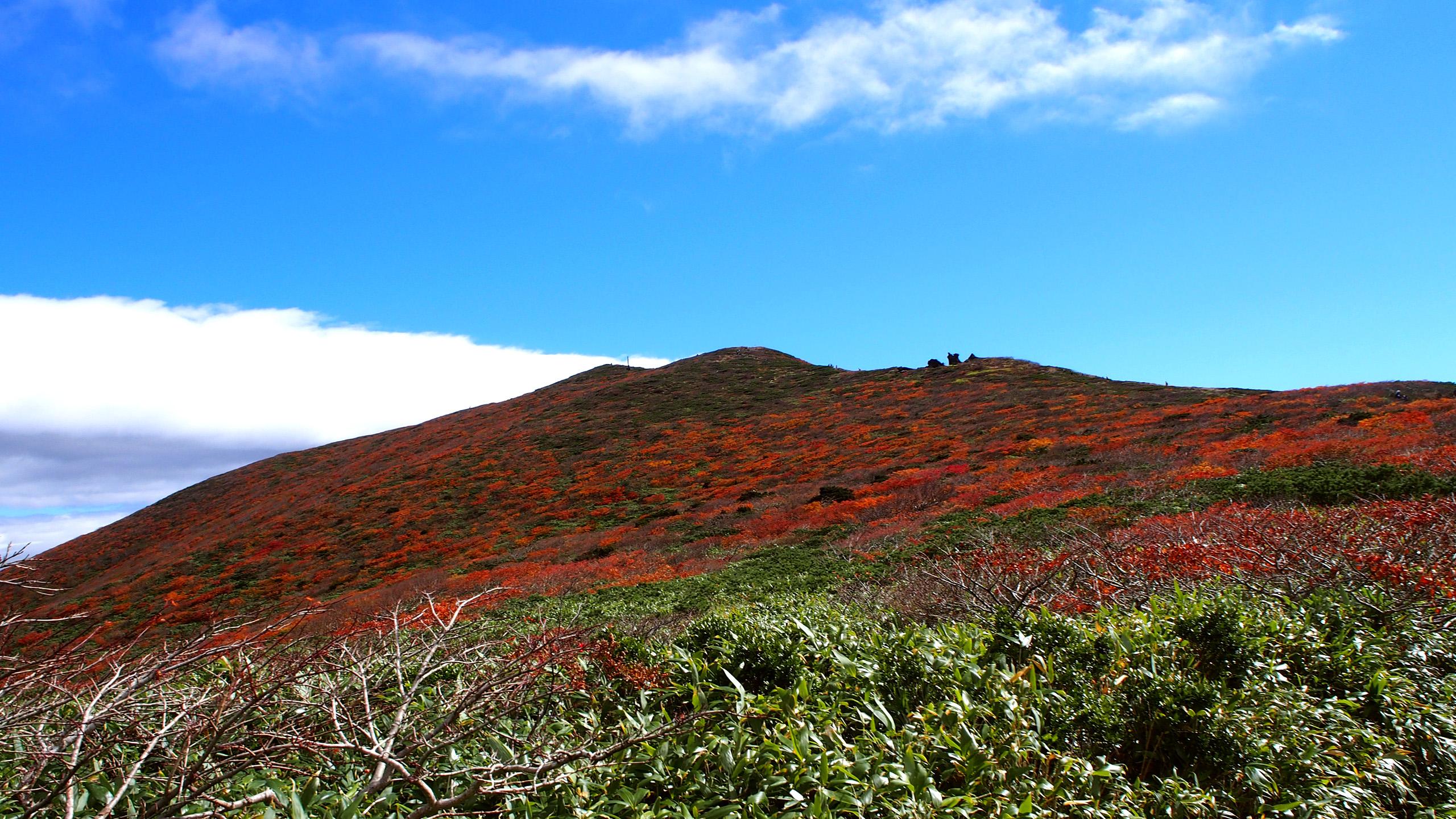 栗駒山の紅葉2