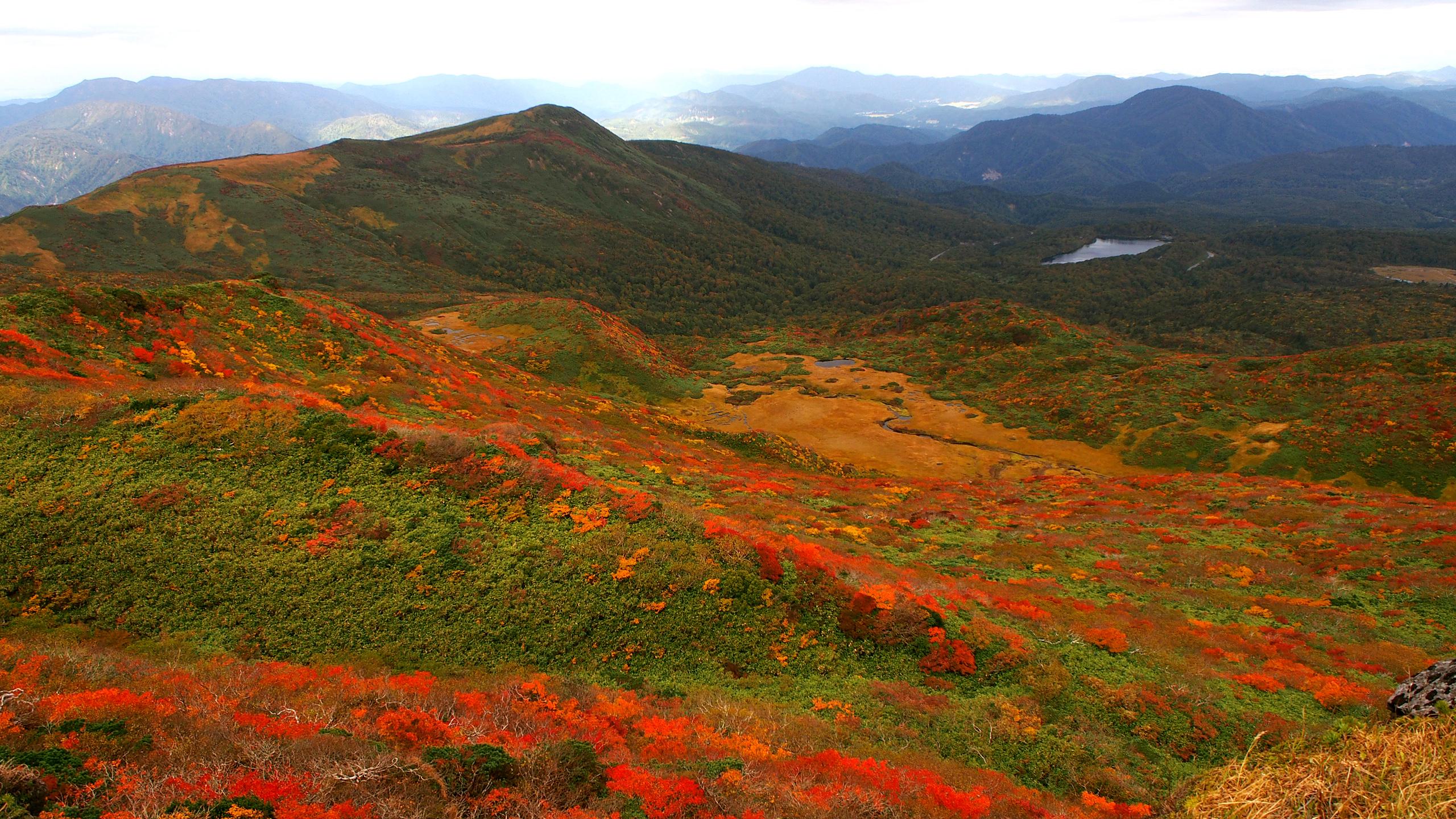 栗駒山の紅葉1