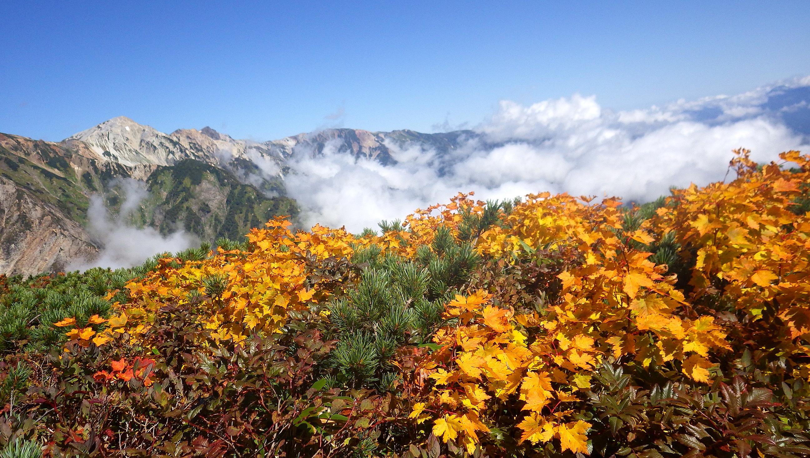 唐松岳の風景