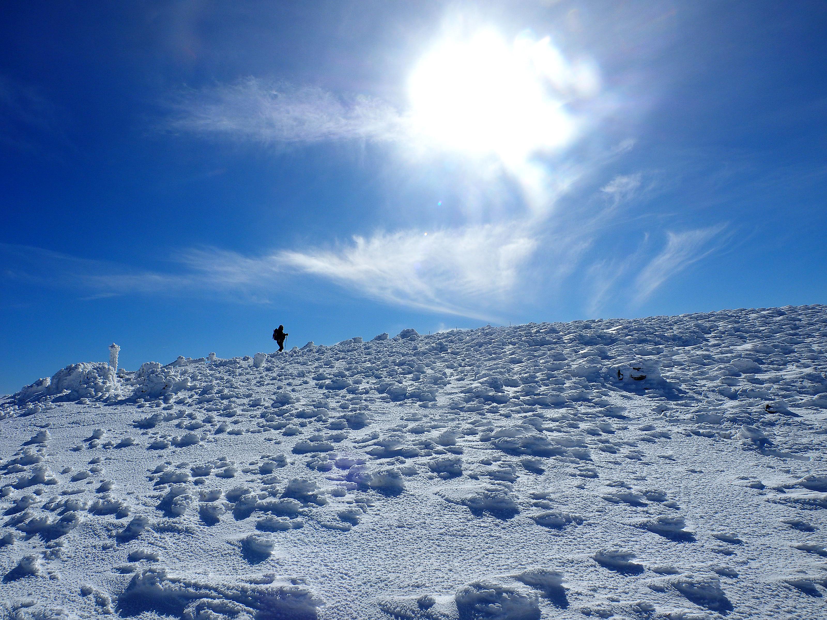 山頂台地を1周