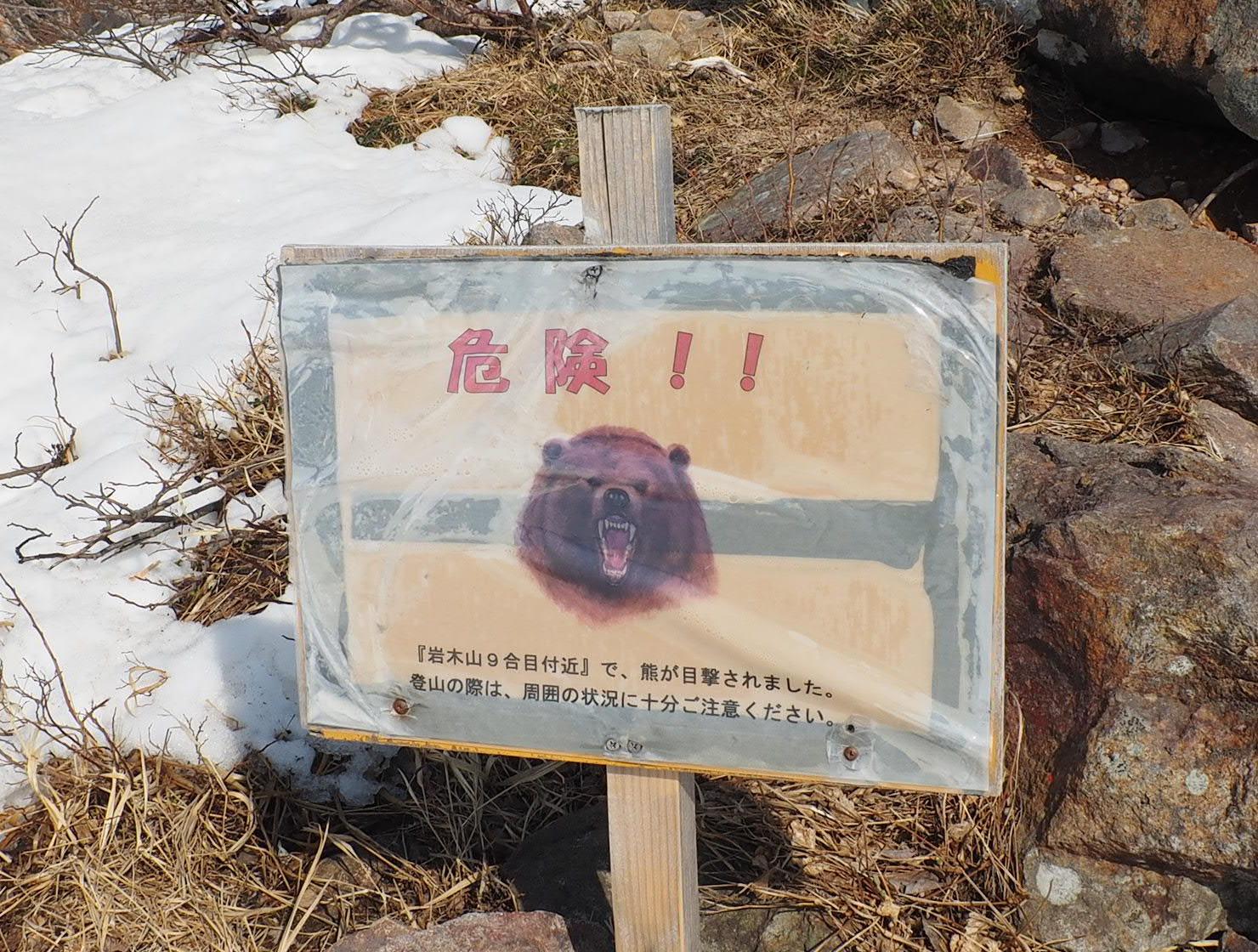 9合目付近で熊の目撃情報あり