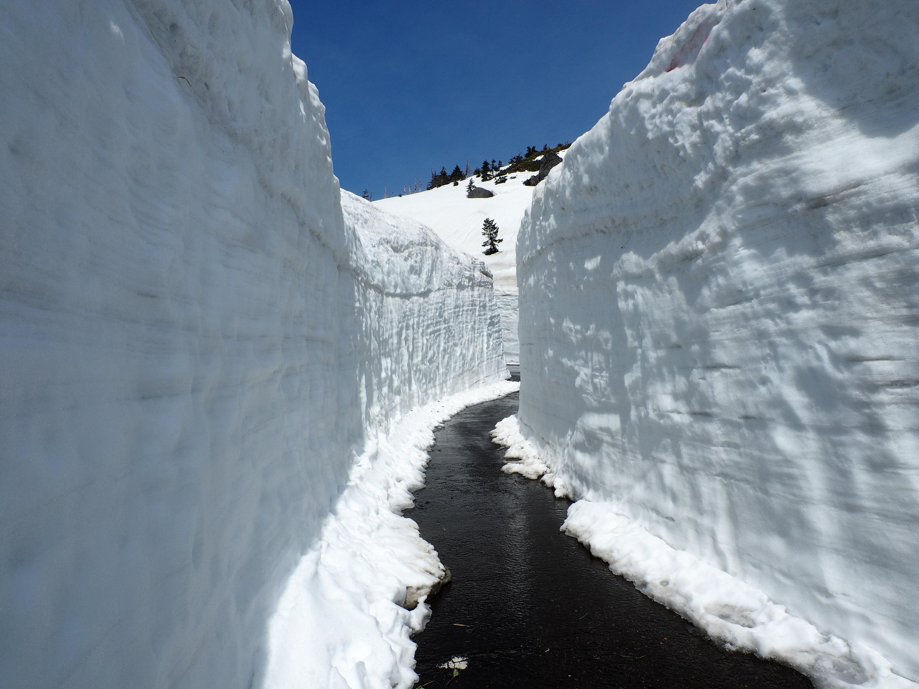 歩行者用の雪の回廊