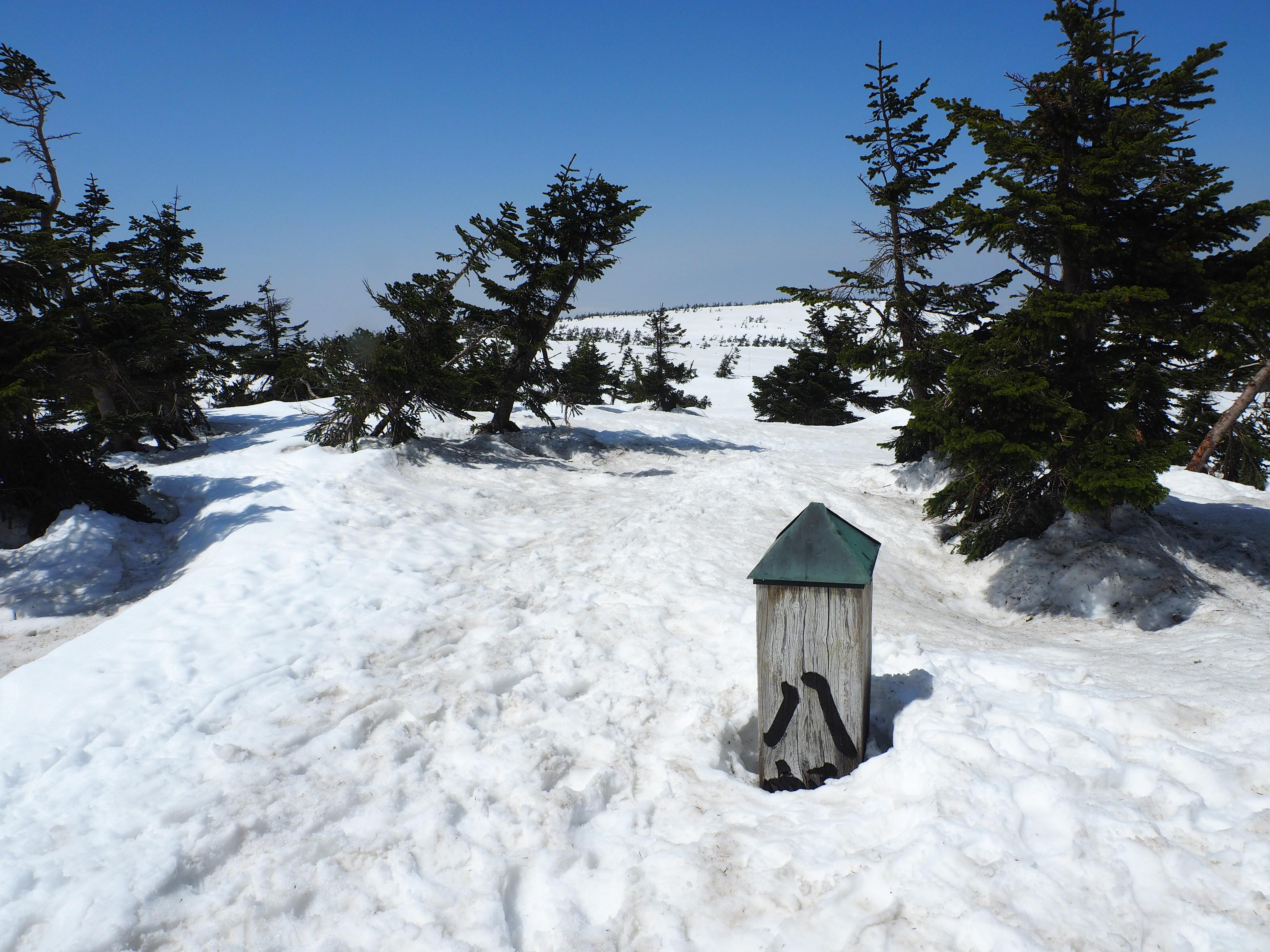 八幡平山頂の標柱