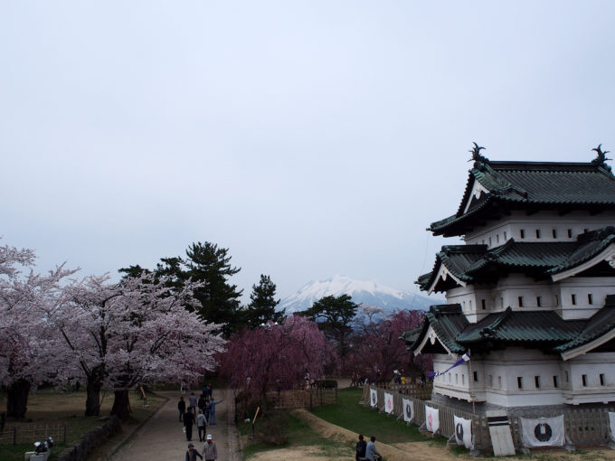 岩木山&桜&弘前城