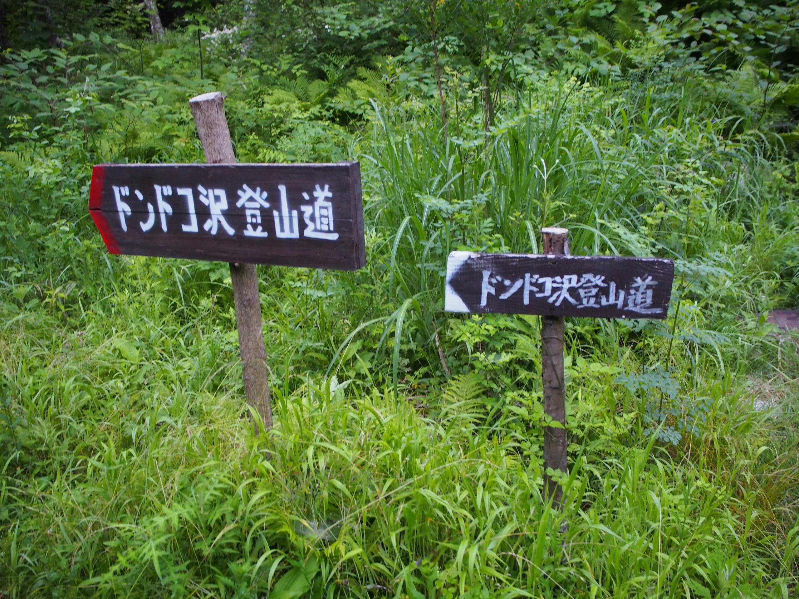 ドンドコ沢登山道スタート